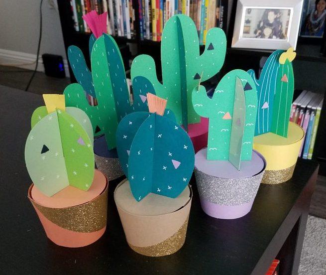 Cactus Kit